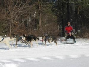 Muddy Paws Sled Dog Rides